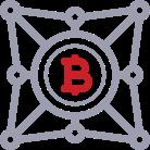 Custom Blockchain Solution